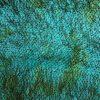 A3 -- Fulgi de paun pe matase naturala-8665